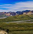 Polychrome Pass Area Denali National Park Four by Mo Barton