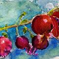 Pomegranate by Anne Duke