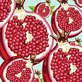 Pomegranate   by Mark Ashkenazi