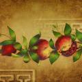 Pomegranates by Barbara Gerodimou