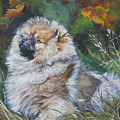 Pomeranian Puppy Autumn Leaves by Lee Ann Shepard