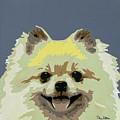 Pomeranian by Slade Roberts