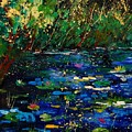 Pond 459030 by Pol Ledent