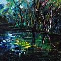 Pond 944 by Pol Ledent