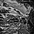 Pond At Great Falls #4 by Stuart Litoff
