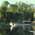 Pond At Mae Stecker Park In Shelby Township Mi  by Anita Hiltz