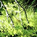 Green Abstract by Dan Bernard