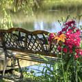 Pond Dreams 11 by Sam Davis Johnson