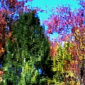 Pond Impressionism by Charles Ford