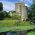 Pond In Front Of A Castle, Blarney by The Irish Image Collection