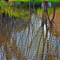 Pond Reflection by Alice Markham