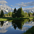 Pond Reflection At Schwabacher Landing by Ray Mathis