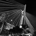 Ponte Octavio Frias De Oliveira At Night - Sao Paulo, Brazil by Carlos Alkmin