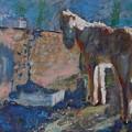 Pony by Horacio Prada