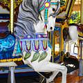 Pony Carousel - Pony Series 5 by Carlos Diaz