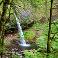 Ponytail Falls, Oregon by Aashish Vaidya