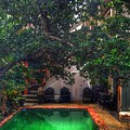 Pool With Tree by Mark Pritchard