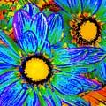 Pop Art Daisies 4 by Amy Vangsgard