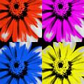 Pop Art Petals by Heather Joyce Morrill