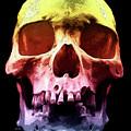 Pop Art Skull Face by Phil Perkins