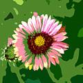 Pop Flower Work Number 23 by David Lee Thompson