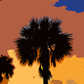 Pop Palms by David Lee Thompson