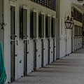 Poplar Grove Equestrian Center by Dale Powell