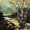 Poplars 45 by Pol Ledent