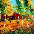 Poplars '459070 by Pol Ledent