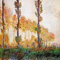 Poplars, Autumn by Claude Monet