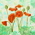 Poppies by Angeles M Pomata