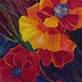 Poppies by Carolyn LeGrand