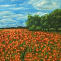 Poppies Field Original Painting by Natalja Picugina