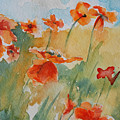 Poppies by Gretchen Bjornson