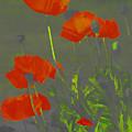 Poppies In Neon by Deborah Benoit