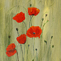 Poppies by Irena Grant-Koch