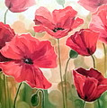 Poppies by Olha Darchuk