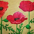 Poppies by Vlasta Smola