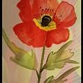 Poppy Art 17-01 by Maria Urso