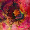 Poppy by Barbara Berney