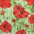 Poppy Field 1 by Jean Blackmer