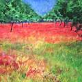 Poppy Field II by Lizzy Forrester