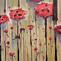 Poppy Field by Jenna Fournier