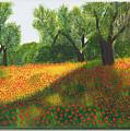 Poppy Field by Sandra Lorant