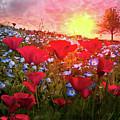 Poppy Fields At Dawn by Debra and Dave Vanderlaan