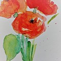 Poppy Flowers 1 by Britta Zehm