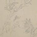 Poppy Leaves by Albert Williams