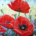 Poppy Love Floral Scene by Richard T Pranke