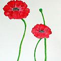 Poppy by Sandy Wager