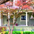 Porch Birdhouse by Jerry Sodorff